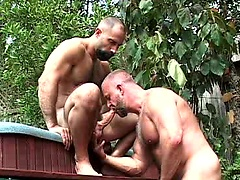 Horny bears Butch Grand and Rik Kappus fuck. Posted by: Pantheon Bear