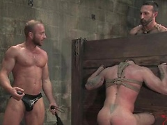 Van has his hands full in the dungeon with three dirty pigs, Tober Brandt, Kurt Weber, and Xavier St-Jude.. Posted by: Bound Gods