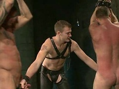 House dom Christian Wilde and Van receive a shipment of boys today.. Posted by: Bound Gods