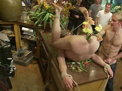 Nordic hunk humiliated and bukkake in a flower shop.. Posted by: Bound in Public