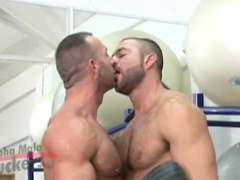 Two hot muscle hunks Marco Salqueiro and Antonio Cavalli fucking. Posted by: Alpha Male Fuckers