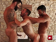 Victor D'Angelo, Drake Rogers, Andy Star - Poolside Breedinga. Posted by: Lucas Entetainment